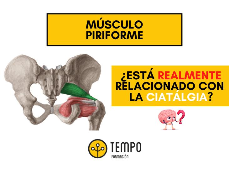 musculo-piriforme-y-ciatalgias
