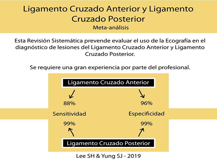 meta-analisis-lca-y-pcl