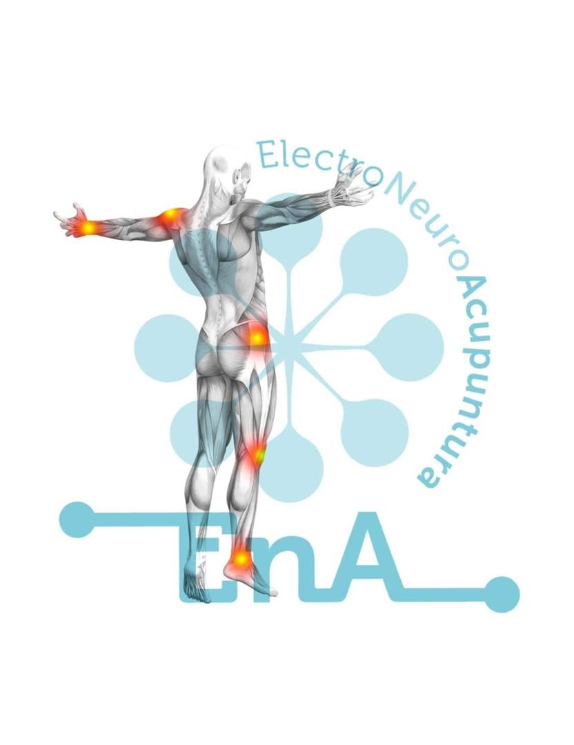 Curso EnA - ElectroNeuroAcupuntura