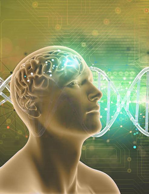 Curso Nutrigenómica en los Procesos de Intervención Fisioterápica.